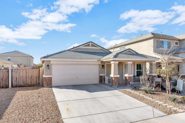40079 W Coltin Way, Maricopa, AZ 85138 (MLS #5886419) :: Yost Realty Group at RE/MAX Casa Grande