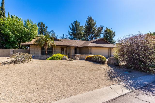 4440 W Bluefield Avenue, Glendale, AZ 85308 (MLS #5886420) :: Yost Realty Group at RE/MAX Casa Grande