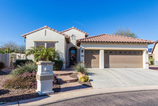 2670 N 158TH Drive, Goodyear, AZ 85395 (MLS #5886424) :: Kortright Group - West USA Realty
