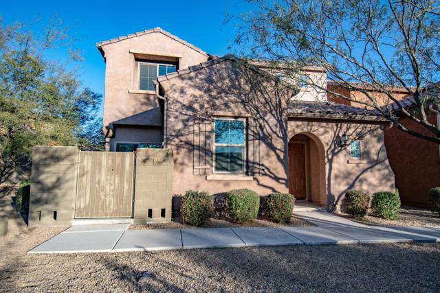 3808 E Ember Glow Way, Phoenix, AZ 85050 (MLS #5886425) :: Occasio Realty