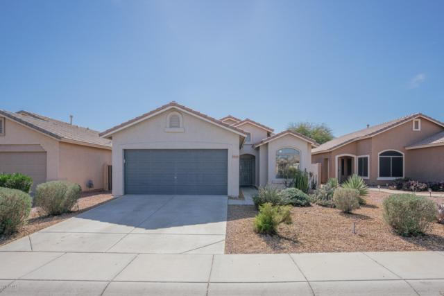 13005 W Windrose Drive, El Mirage, AZ 85335 (MLS #5886456) :: Kelly Cook Real Estate Group
