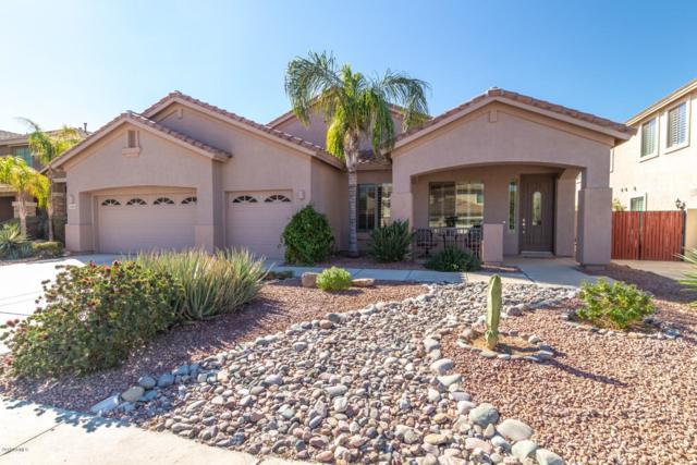 10623 E Kilarea Avenue, Mesa, AZ 85209 (MLS #5886502) :: Yost Realty Group at RE/MAX Casa Grande