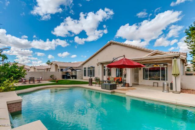 7447 W Paraiso Drive, Glendale, AZ 85310 (MLS #5886506) :: The Garcia Group