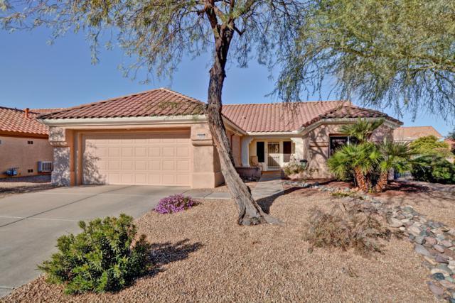 14442 W Wagon Wheel Drive, Sun City West, AZ 85375 (MLS #5886522) :: Kelly Cook Real Estate Group