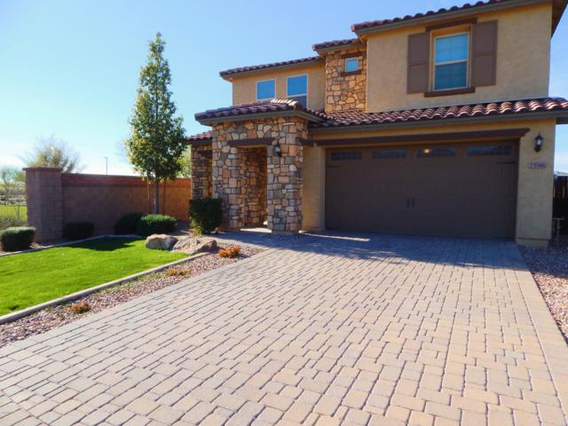 2596 E Hickory Street, Gilbert, AZ 85298 (MLS #5886537) :: Realty Executives