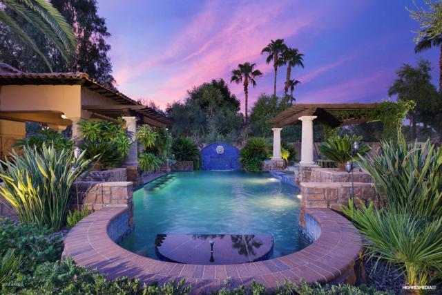 8230 E Sutton Drive, Scottsdale, AZ 85260 (MLS #5886546) :: Realty Executives