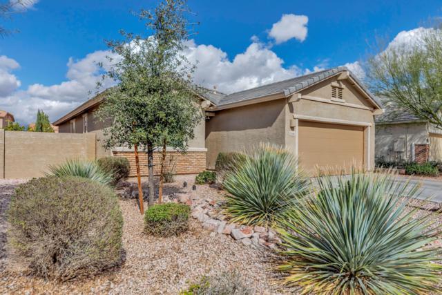 11146 E Sebring Avenue, Mesa, AZ 85212 (MLS #5886578) :: Realty Executives