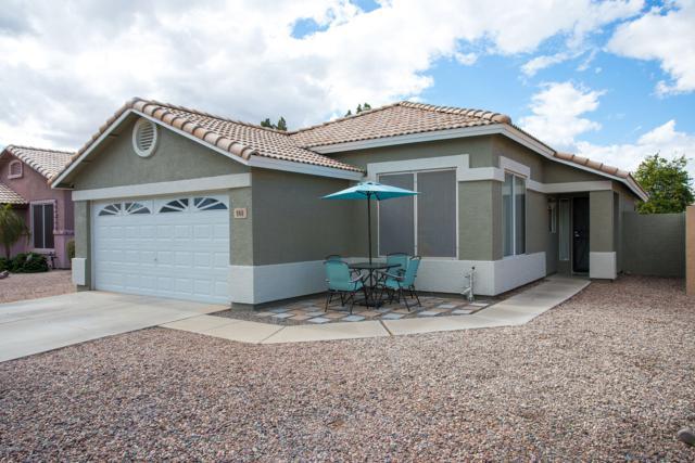 900 N Olympic Drive, Gilbert, AZ 85234 (MLS #5886585) :: Realty Executives