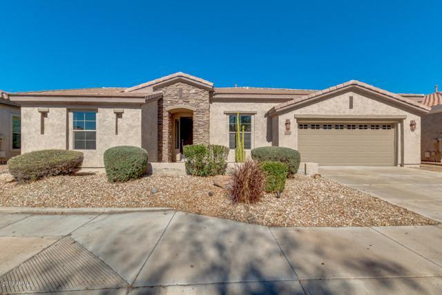 4194 E Carob Drive, Gilbert, AZ 85298 (MLS #5886595) :: Yost Realty Group at RE/MAX Casa Grande