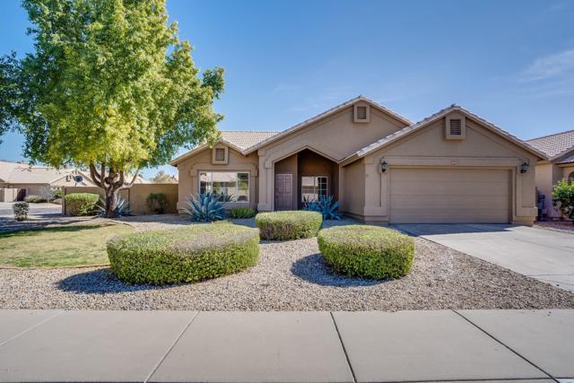 693 N Butte Avenue, Chandler, AZ 85226 (MLS #5886614) :: The Garcia Group