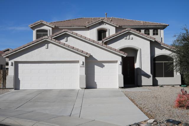 43448 W Askew Drive, Maricopa, AZ 85138 (MLS #5886616) :: Yost Realty Group at RE/MAX Casa Grande