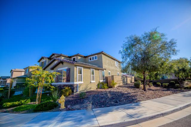1657 N 214TH Lane, Buckeye, AZ 85396 (MLS #5886671) :: CC & Co. Real Estate Team