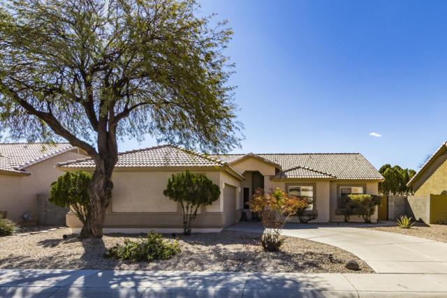 8177 W Stella Avenue, Glendale, AZ 85303 (MLS #5886676) :: The Results Group