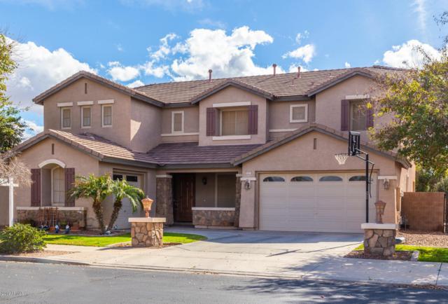 19151 E Canary Way, Queen Creek, AZ 85142 (MLS #5886705) :: Occasio Realty
