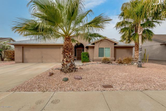 19020 N 41ST Place, Phoenix, AZ 85050 (MLS #5886733) :: Kelly Cook Real Estate Group