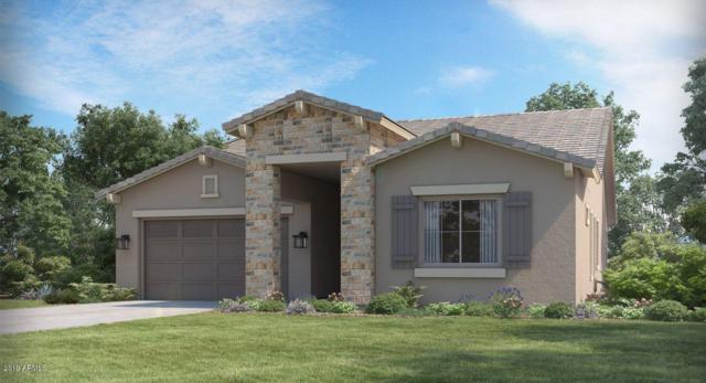 18504 W Chuckwalla Canyon Road, Goodyear, AZ 85338 (MLS #5886780) :: Occasio Realty