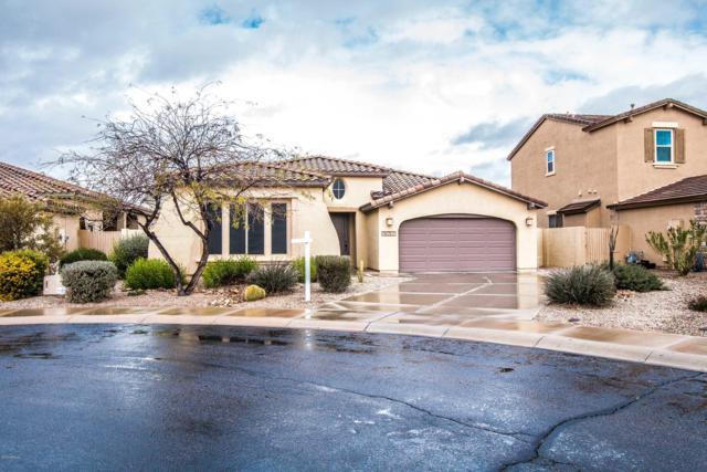 18052 W Paseo Way, Goodyear, AZ 85338 (MLS #5886785) :: Yost Realty Group at RE/MAX Casa Grande