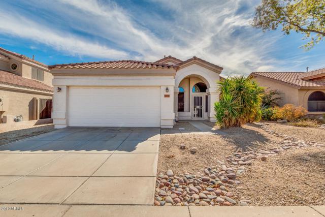 3925 W Tonopah Drive, Glendale, AZ 85308 (MLS #5886811) :: The Results Group