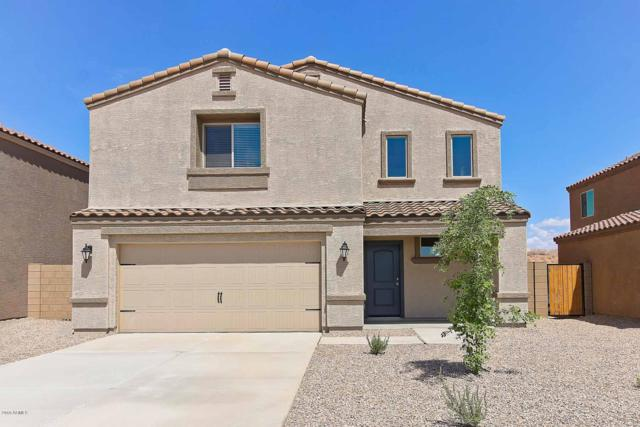 13139 E Desert Lily Lane, Florence, AZ 85132 (MLS #5886816) :: RE/MAX Excalibur