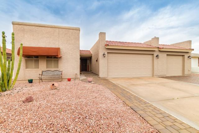 26218 S Greencastle Drive, Sun Lakes, AZ 85248 (MLS #5886843) :: Gilbert Arizona Realty