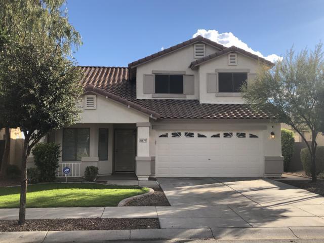 15877 W Diamond Street, Goodyear, AZ 85338 (MLS #5886853) :: Occasio Realty