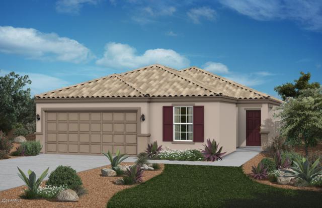 36930 N El Morro Trail, San Tan Valley, AZ 85140 (MLS #5886864) :: The Bill and Cindy Flowers Team