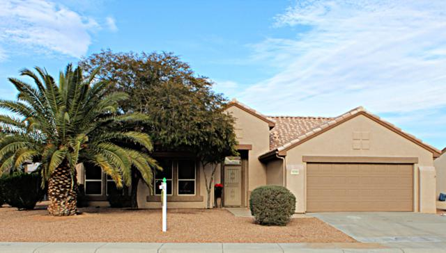 16366 W Willow Creek Lane, Surprise, AZ 85374 (MLS #5886879) :: Lifestyle Partners Team