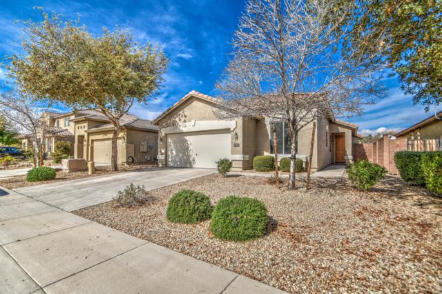 17962 W Purdue Avenue, Waddell, AZ 85355 (MLS #5886892) :: Kelly Cook Real Estate Group