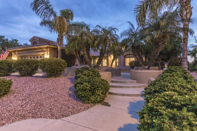 15693 W Edgemont Avenue, Goodyear, AZ 85395 (MLS #5886901) :: Occasio Realty