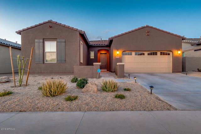 18574 W Sunward Drive, Goodyear, AZ 85338 (MLS #5886965) :: Occasio Realty