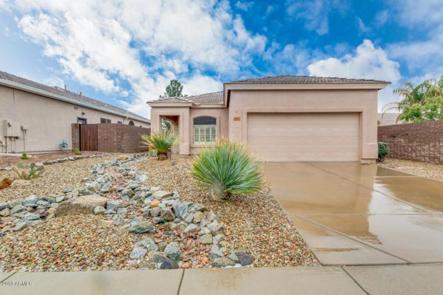 4615 E Chisum Trail, Phoenix, AZ 85050 (MLS #5886976) :: Occasio Realty