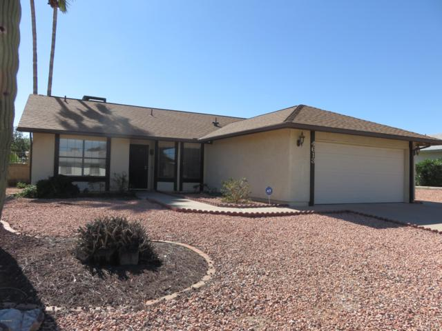 4613 E Bohl Street, Phoenix, AZ 85044 (MLS #5886989) :: Relevate   Phoenix