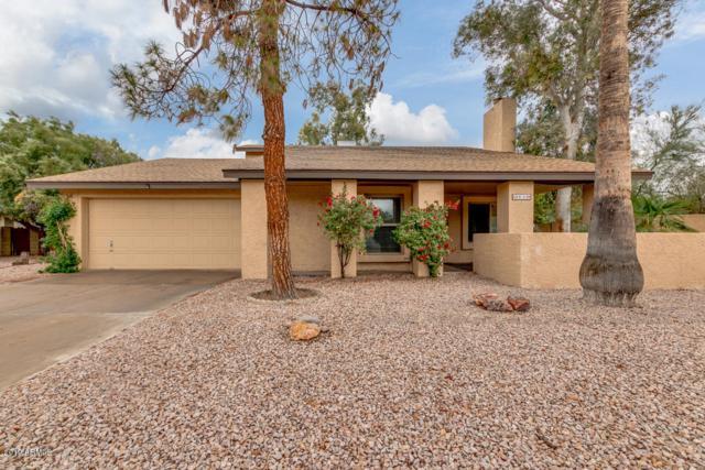 1809 S Standage Circle, Mesa, AZ 85202 (MLS #5887007) :: Occasio Realty