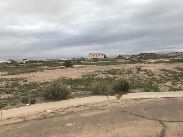 11056 W Hobbit Drive, Arizona City, AZ 85123 (MLS #5887012) :: Phoenix Property Group