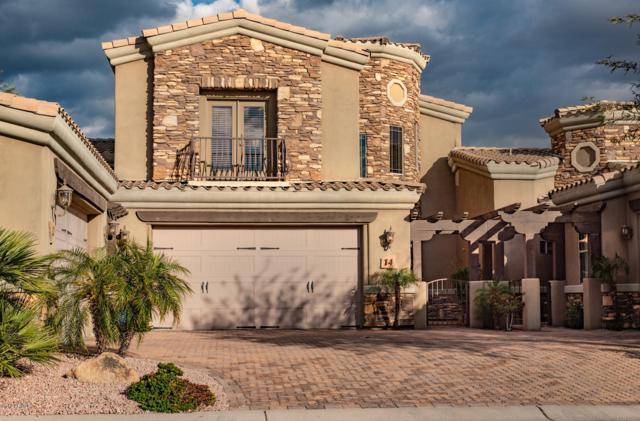 6202 E Mckellips Road #14, Mesa, AZ 85215 (MLS #5887017) :: Occasio Realty