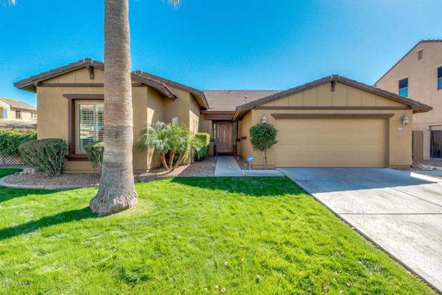 3365 E Grand Canyon Drive, Chandler, AZ 85249 (MLS #5887039) :: Occasio Realty