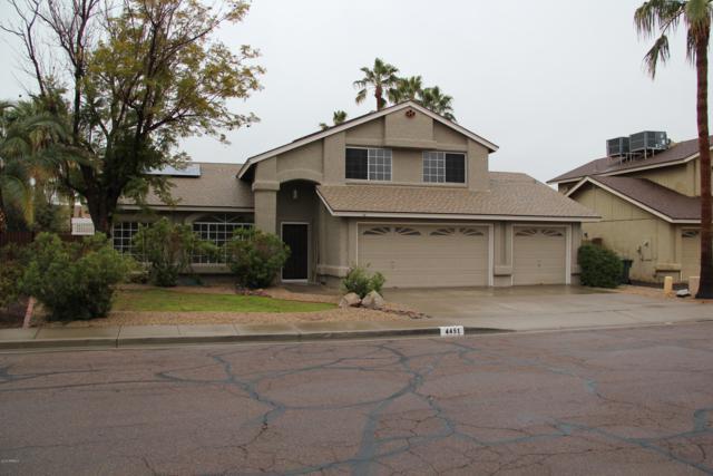 4451 W Avenida Del Sol Avenue, Glendale, AZ 85310 (MLS #5887061) :: The Results Group