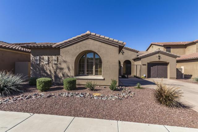 8436 S 21ST Place, Phoenix, AZ 85042 (MLS #5887065) :: Devor Real Estate Associates