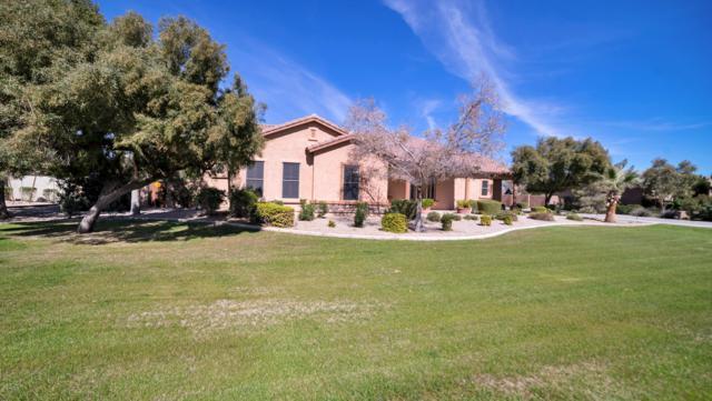 16364 W Durango Street, Goodyear, AZ 85338 (MLS #5887126) :: Occasio Realty