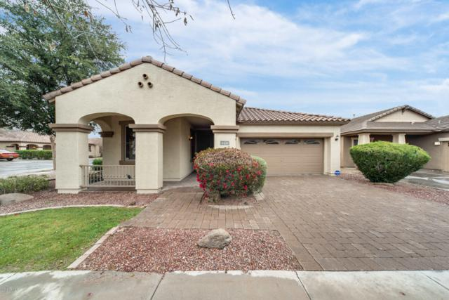 4436 E Dublin Street, Gilbert, AZ 85295 (MLS #5887138) :: CANAM Realty Group
