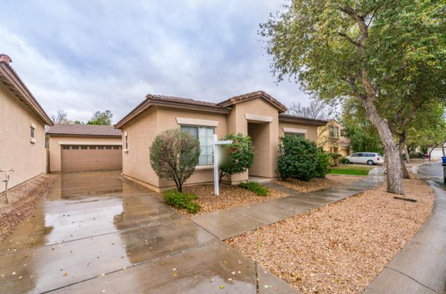 7651 E Boise Street, Mesa, AZ 85207 (MLS #5887153) :: Kelly Cook Real Estate Group