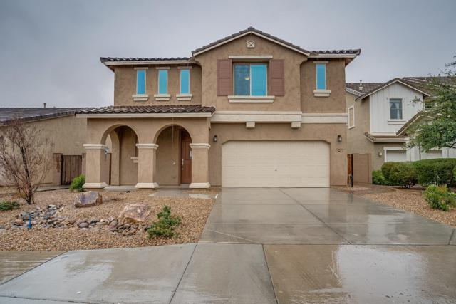 40781 W Rio Grande Drive, Maricopa, AZ 85138 (MLS #5887178) :: CANAM Realty Group