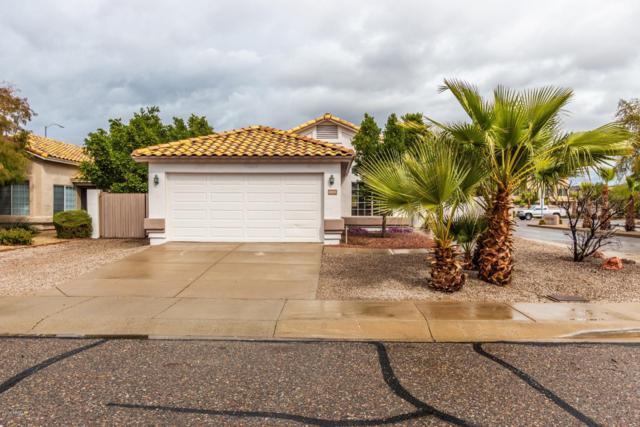 6810 W Louise Drive, Glendale, AZ 85310 (MLS #5887181) :: Occasio Realty