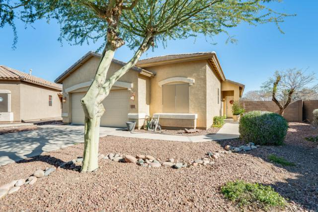 4271 N 127TH Drive, Litchfield Park, AZ 85340 (MLS #5887213) :: Kelly Cook Real Estate Group
