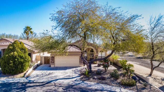 20239 N 39th Drive, Glendale, AZ 85308 (MLS #5887227) :: Occasio Realty