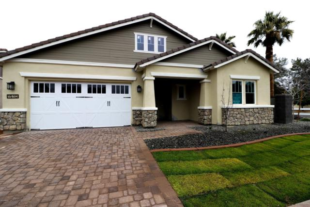 1510 W Gardenia Drive, Phoenix, AZ 85021 (MLS #5887233) :: Gilbert Arizona Realty