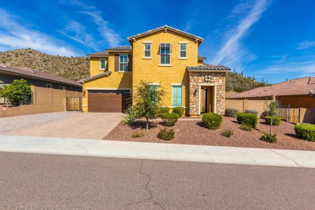 10074 W Redbird Road, Peoria, AZ 85383 (MLS #5887255) :: Kelly Cook Real Estate Group