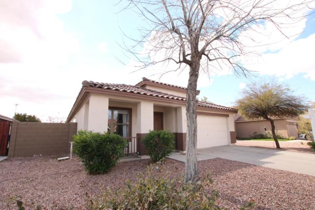 3039 W Roberta Drive, Phoenix, AZ 85083 (MLS #5887258) :: Kelly Cook Real Estate Group