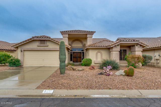 8401 E Aloe Vera Circle, Gold Canyon, AZ 85118 (MLS #5887279) :: The Bill and Cindy Flowers Team