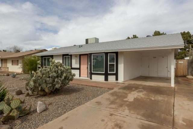 830 W Watson Drive, Tempe, AZ 85283 (MLS #5887287) :: The Bill and Cindy Flowers Team